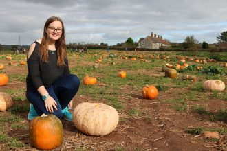 Pumpkin Picking in Somerset